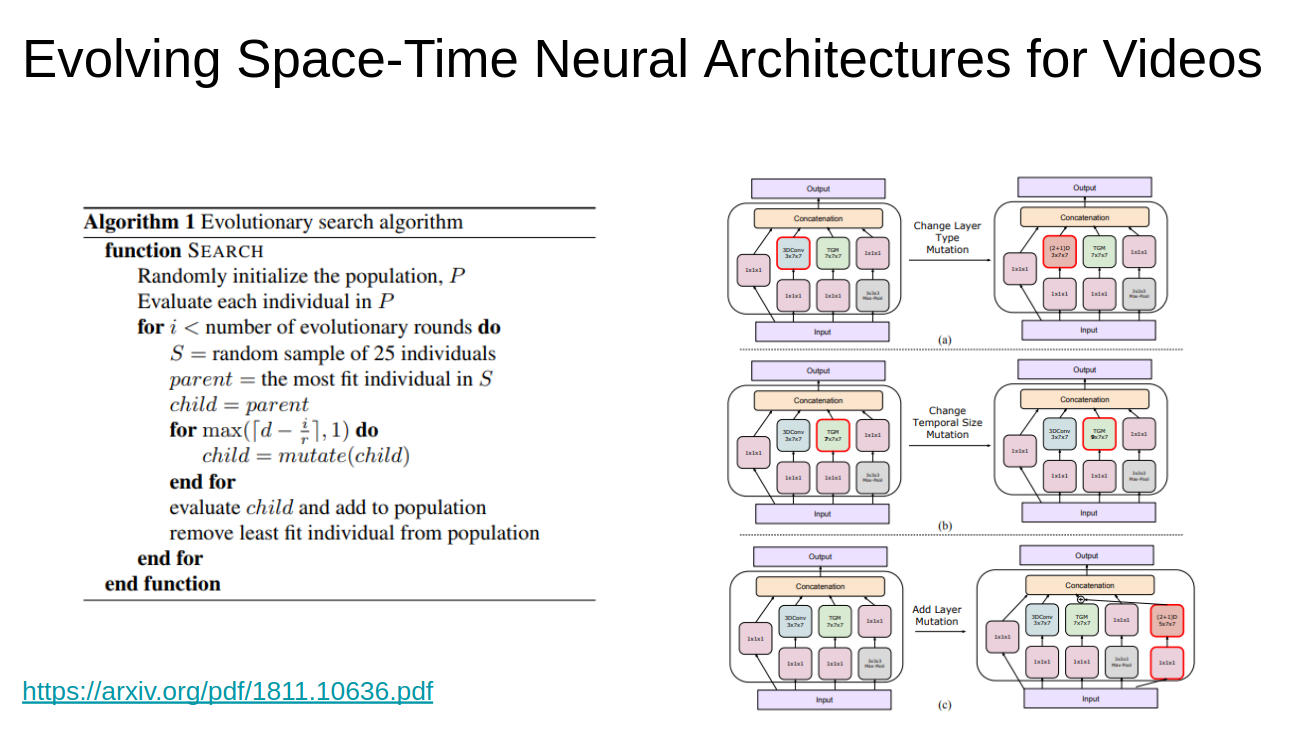 Evolving Space-Time Neural Architectures for Videos